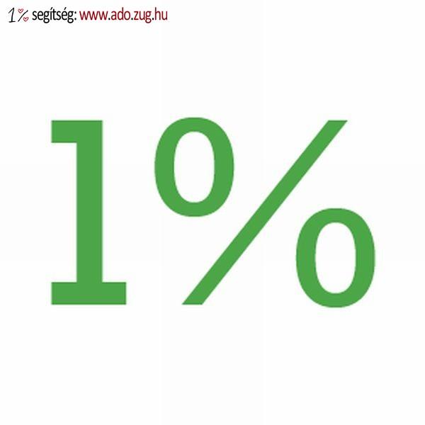 SZJA 1 százalék 2013. évben