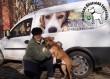 Megmentettük Bubu( Pizzás) kutyust!