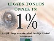Zöld Menedék Állatvédő Alapítvány