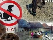 Fehérkereszt Állatvédő Liga