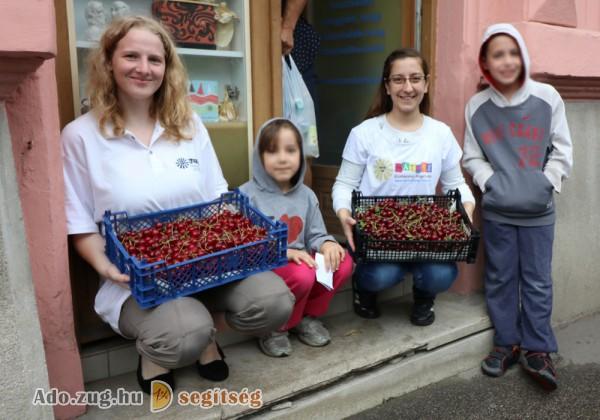 Élelmiszerosztás, gyümölcs és vitamin