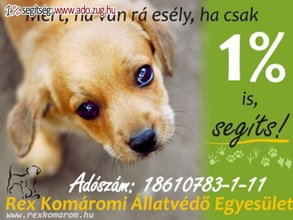 Rex Komáromi Állatvédő Egyesület