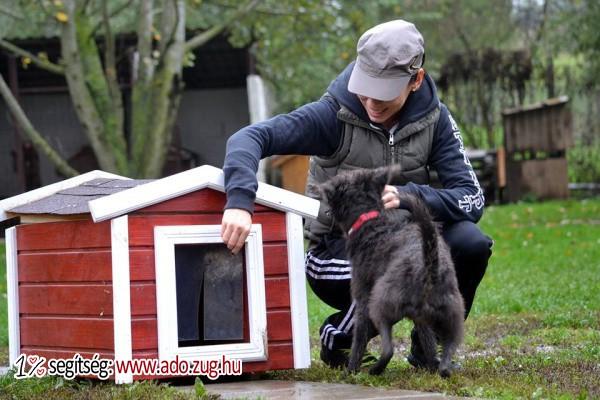 Etyeki Állatvédők Egyesülete