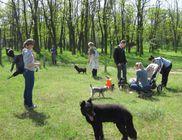 Amina Állatvédelmi Központ Alapítvány
